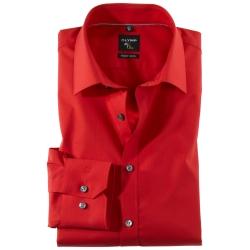 OLYMP No 6 six rood
